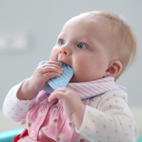 Cheeky Chompers Neckerchew 2 in 1 Baby Bib with Teether - Cool Chic