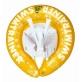 Freds - SWIMTRAINER Classic Yellow