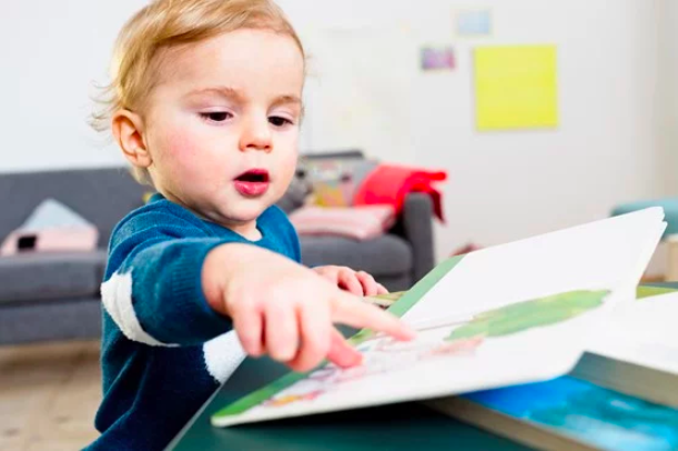 baby's very first library board books first learning series for little one 宝宝学习初学英文词汇