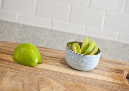 stainless steel food and snack bowl